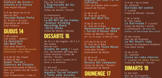 Cartell de la Festa Major Torrada 2014